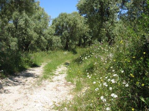 Wandelen Lefkas - Griekenland